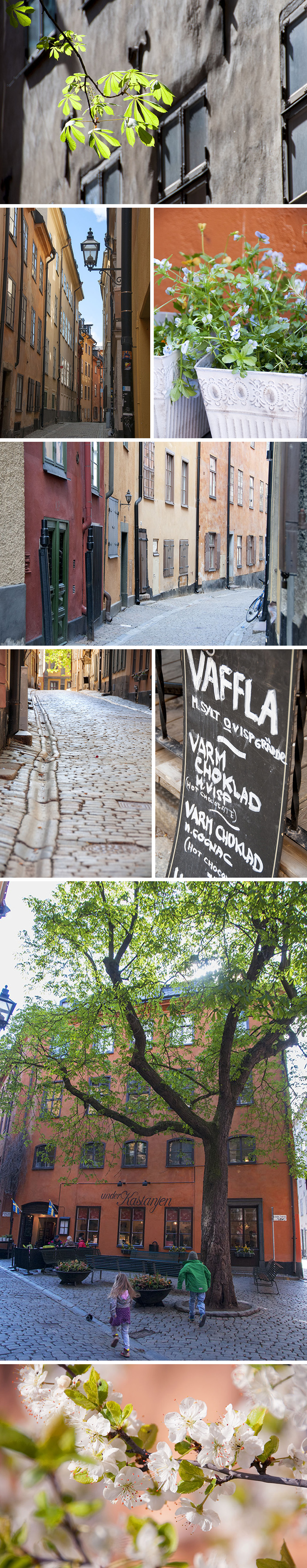 gamla stan collage