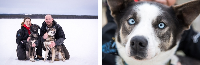 arctic cirle adv collage